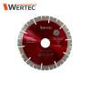 Tarcza diamentowa 120x10x20mm WERTEC